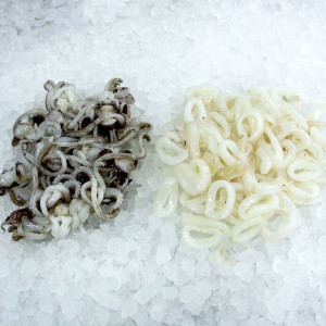 anelli-e-ciuffi-di-calamari-derado-produzione-lavorazione-vendita-pesce-fresco-surgelato-congelato-pesca-prodotti-ittici-matera-basilicata