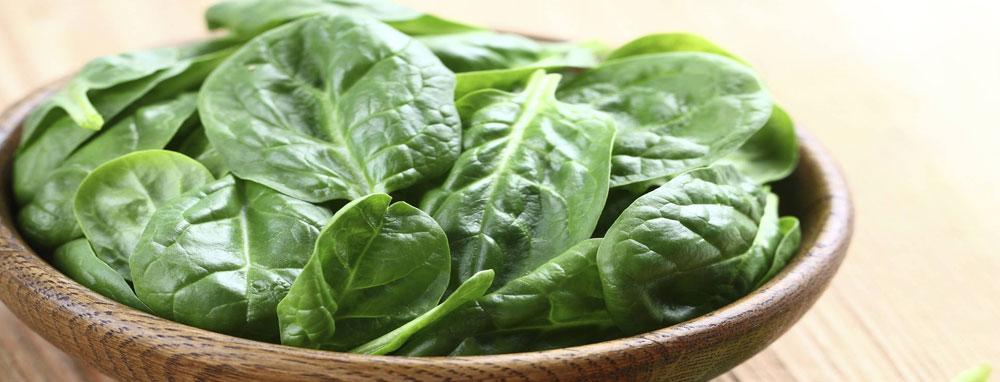 verdure-de-salvo-srl-vendita-distribuzione-pesce-fresco-surgelato-prodotti-congelati-matera-basilicata-puglia